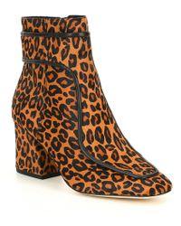 Donald J Pliner - Geena Leopard Print Calf Hair Booties - Lyst