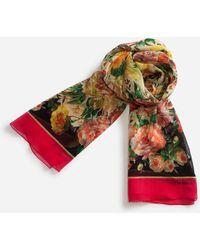Dolce & Gabbana - Printed Silk Crepon Scarf (120 X 200) - Lyst