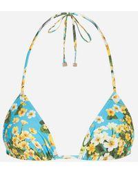 Dolce & Gabbana - Sujetador De Bikini De Triángulo Estampado - Lyst