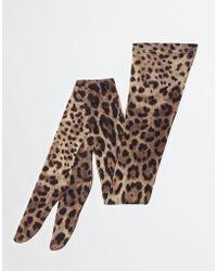 Dolce & Gabbana - Printed Tights - Lyst