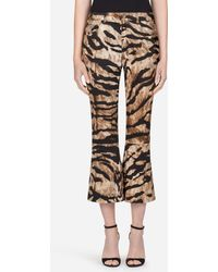 Dolce & Gabbana - Pants In Printed Cotton - Lyst