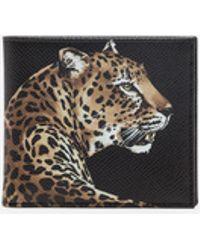 Dolce & Gabbana - Printed Dauphine Calfskin Wallet - Lyst
