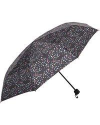 Dorothy Perkins - Multi Spot Umbrella - Lyst