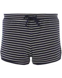 Dorothy Perkins - Navy Striped Jersey Shorts - Lyst