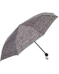 Dorothy Perkins - Leopard Print Umbrella - Lyst