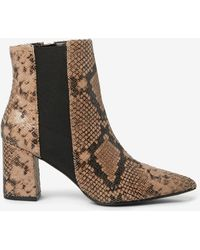 3e203654d114 Dorothy Perkins - Brown Snake Print 'annika' Chelsea Boots - Lyst
