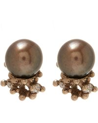 Ruth Tomlinson - Gold Black Pearl Encrusted Stud Earrings - Lyst