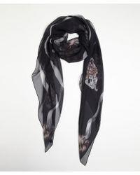 Alexander McQueen Grey Romantic Skull Printed Silk Square Scarf - Lyst