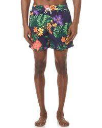 Polo Ralph Lauren - Tropical Jungle Traveller Swim Trunks - Lyst
