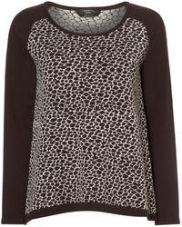 Max Mara Ande Animal Print Front Long Sleeved Knitted Top - Lyst