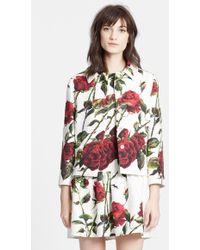 Dolce & Gabbana Rose Print Short Brocade Jacket - Lyst