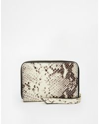Twelfth Street Cynthia Vincent - Embossed Snake Purse - Lyst