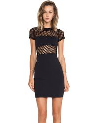 Donna Mizani Banded Fitted Mini Dress - Lyst