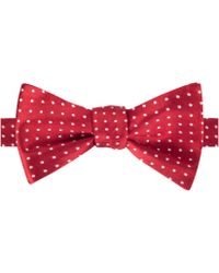 Tommy Hilfiger Red Dots Bow Tie - Lyst