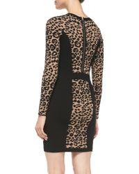 Milly Cheetah/Solid Long-Sleeve Knit Sheath Dress - Lyst