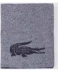 Lacoste - Grey And Navy Blue Flecked Wool Scarf With Brand Detail - Lyst