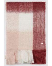 Gloria Ortiz - Tinker Horse Red Printed Scarf - Lyst
