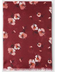 El Corte Inglés Burgundy Poppies Foulard - Red