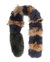 Mr & Mrs Italy - Mongolia And Raccoon Fur Collar - Lyst