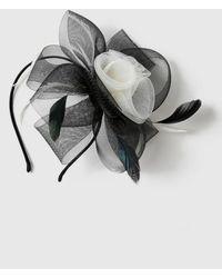 Evans - Monochrome Feather Hairband Fascinator - Lyst