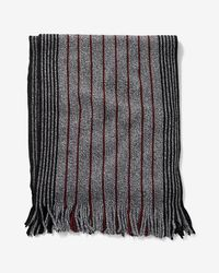 Express - Stripe Merino Wool Scarf - Lyst