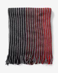 Express - Merino Wool Blend Striped Scarf - Lyst