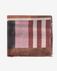 Express - Shimmer Plaid Oblong Scarf - Lyst