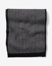 Express - Merino Wool Blend Scarf - Lyst