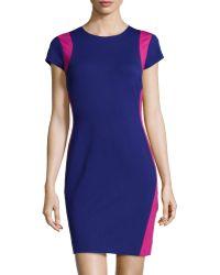 Diane Von Furstenberg Capsleeve Fitted Knit Dress - Lyst