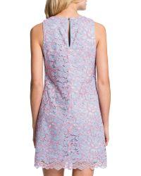 Cynthia Steffe Esther Sleeveless Lace Shift Dress - Lyst