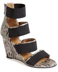 Women's Report Shoes