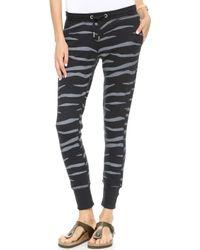 Zoe Karssen Slim Fit Zebra Sweatpants  Pirate Black - Lyst