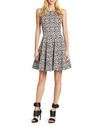 Tibi Leopardprint Stretch Knit Fitandflare Dress - Lyst