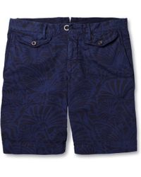 Incotex Printed Cotton Shorts - Lyst