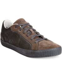 Geox Smart Low Top Sneakers - Lyst