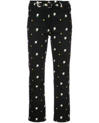 Miaou Daisy Embroidered Pants - Black