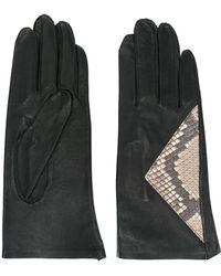 Jean Paul Gaultier - Snakeskin Panel Gloves - Lyst