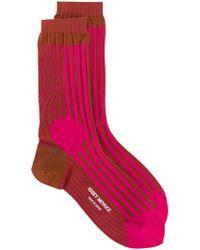 Issey Miyake | Intarsia Stripe Socks | Lyst