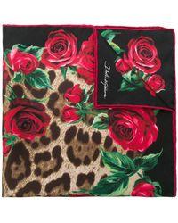 Dolce & Gabbana - Schal mit Leo-Print - Lyst