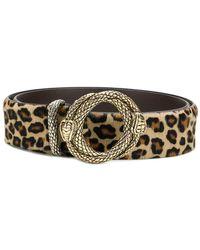 Just Cavalli - Leopard Print Belt - Lyst
