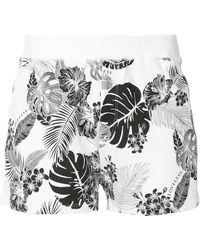 Loveless - Palm Print Shorts - Lyst