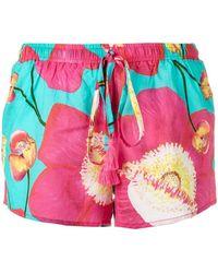 Isolda - Floral Print Shorts - Lyst