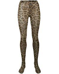 Dolce & Gabbana - Leopard Tights - Lyst