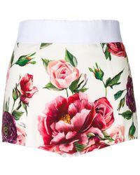 Dolce & Gabbana - Peony Print High Waisted Shorts - Lyst