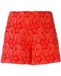Giamba - Lace Over-lay Shorts - Lyst