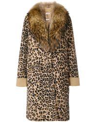 P.A.R.O.S.H. - Leopard Print Coat - Lyst