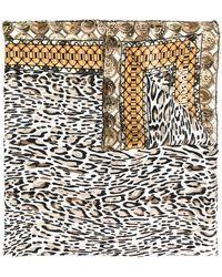 Roberto Cavalli - Leopard Print Scarf - Lyst