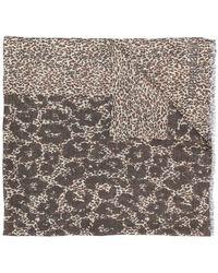 Roberto Cavalli - Animal Print Scarf - Lyst