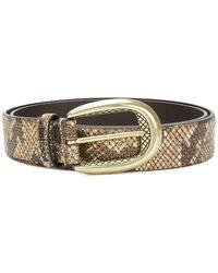 Just Cavalli - Snakeskin Effect Belt - Lyst