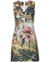 Adam Lippes - Forest Print Mini Dress - Lyst